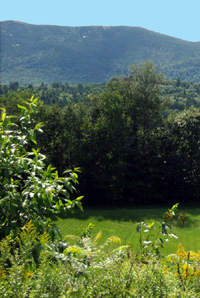 North Conway Mountain Inn View